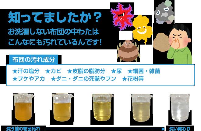 【布団の汚れ成分】汗の塩分、カビ、皮脂の脂肪分、細菌・雑菌、尿、フケやアカ、ダニ・ダニの死骸やフン、花粉等